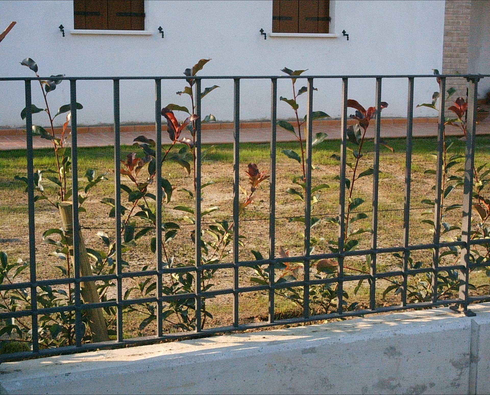 Free album recinzioni esterne with recinzioni esterne for Cancelli in ferro leroy merlin